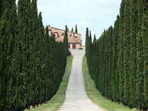 The Landscape Of The Val D'Orcia. Royalty Free Stock Photo