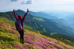Free The Lawn With The Bushes Of Rhododendron Flowers. The Girl With Back Sack. The Landscape With Cloudy Sky, High Mountains. Stock Photos - 119447323