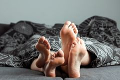 The Legs, Feet Of A Couple In Love Are Sticking Out From Under The Blanket. Valentine`s Day Or Love Story. Prelude In Bed, Sex, Stock Image
