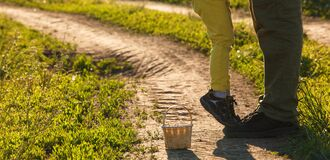 Free The Legs Of The Father And The Child In Yellow Pants, Where The Child Stands On His Toes And On His Father`s Shoes On The Road Stock Photos - 184306833