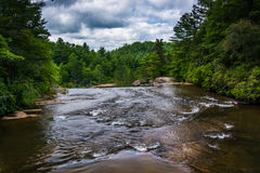 Free The Little River Above High Falls, In Dupont State Forest, North Royalty Free Stock Photo - 47662155