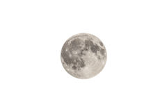 The Moon Isolated On White Royalty Free Stock Photography