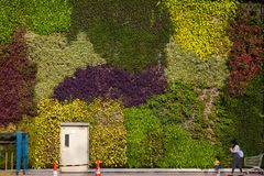 Free The Natural Walls Of The Urban Living Stock Image - 161837311