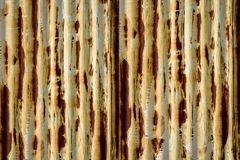 Free The Old Galvanized Sheet Is Used As A Background Royalty Free Stock Image - 143682546