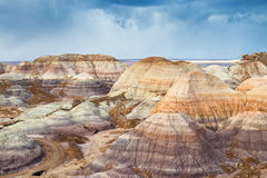 Free The Petrified Forest National Park Stock Photography - 85233912