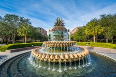 Free The Pineapple Fountain, At The Waterfront Park In Charleston, South Carolina Stock Images - 147453294