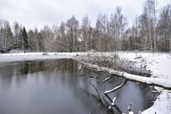 Free The Pond, The Winter Forest Looks Like A Huge Palace, Where Winter Lives, The Harsh Trees, Like Guards, Stand Still, Dressed Royalty Free Stock Photo - 165036985