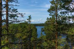 Free The Quiet Wild Forest And Lonely Trees On The  Top Of A Rocky Island In The Linnansaari National Park In Finland - 5 Stock Images - 154976844