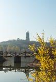 The River Bridge Royalty Free Stock Photo