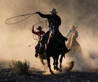 The Round Up Stock Photography