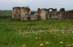 Free The Ruins Of The Ancient Castle Are In The Field, Where Growing Spring Grass And Spring Flowers Against Dark Blue Sky Stock Images - 144017124