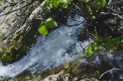 Free The Rushing Creek In The Forest Royalty Free Stock Photos - 153171938