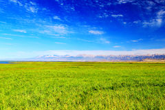 The Scenery On The Road To Qinghai Tibet Plateau Royalty Free Stock Image