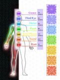 The Seven Main Chakras Royalty Free Stock Images