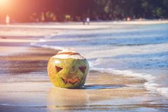 Free The Shore Of A Tropical Island. On The Shore Lies A Coconut With A Terrible Halloween Face Carved On It. Sunny Day Royalty Free Stock Photo - 160367015