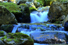 The Slovak River Royalty Free Stock Photography