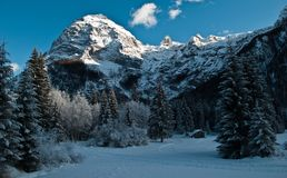 Free The Snow-covered Firs And The Hut Near The Mountains Stock Photos - 105042483