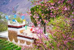 The Spring Of The Tibetan Village In Danba Stock Images