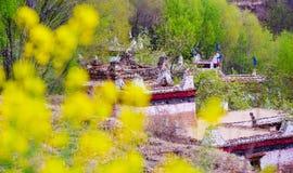 The Spring Of The Tibetan Village In Danba Royalty Free Stock Photos