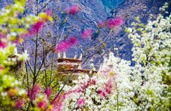 The Spring Of The Tibetan Village In Danba Royalty Free Stock Images