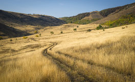 Free The Steppe In The Twilight Afar The Road And Mountains Stock Images - 50412294