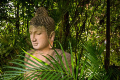 The Stone Buddha Statue In Forest Background Royalty Free Stock Photo