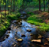 The Streams Under The Setting Sun Streams Stock Images