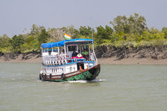 The Sundarbans Royalty Free Stock Image