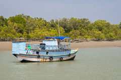 The Sundarbans Stock Photography