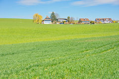 Free The Swiss Countryside Royalty Free Stock Images - 53894889