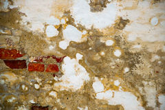 The Texture Of The Stone. The Plaster On The Wall Royalty Free Stock Images