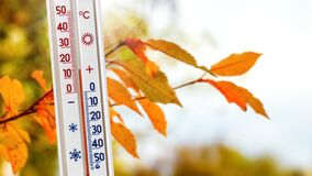 Free The Thermometer Near The Branch With Autumn Leaves Shows 15 Degrees Of Heat. Warm Autumn Weather Stock Photo - 193193860