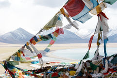 Free The Tibetan Budhhist Flags Stock Images - 5349034