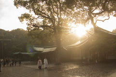The Traditional Wedding In Meiji Shrine Tokyo , Japan. Stock Photos