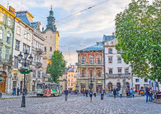 The Trams In Lvov Royalty Free Stock Image