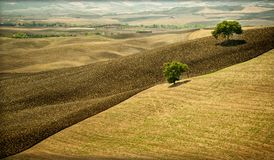 Free The Val D`Orcia, Is A Region Of Tuscany, With Gentle Hills Cultivated Mainly With Ce Stock Image - 108398951
