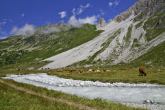 The Vanoise National Park Stock Image