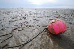 Free The Wadden Sea Stock Photos - 22611573