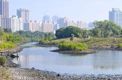 The Wetland Swamp Near City I Royalty Free Stock Image