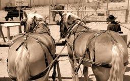 The Wild West 1 Stock Photo