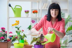 Free The Woman Florist Working In The Flower Shop Stock Photo - 101208890