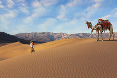 Free The Woman - Tourist Photographing The Camel Royalty Free Stock Image - 35263286
