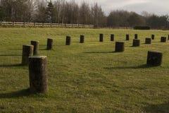 Free The Woodhenge Close To Stonehenge Stock Photos - 171481213