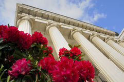 Theater building with columns and flowers. Theater building in historical center of Genova Stock Photography