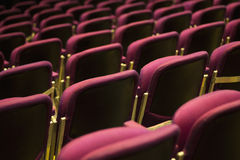 Theater chairs. Red theater chairs with selective focus Stock Photos