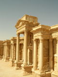 Theater at Palmyra, Syria. Ruins of the ancient caravan city of Palmyra in Syria Stock Images