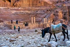 Theater an PETRA, Jordanien Stockbilder