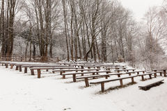Theater in the winter woods Royalty Free Stock Image