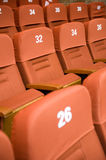 Theatre chairs. A line of red theatre chairs Stock Image