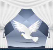 Theatre_pigeonhen. Theater scene with a white veil, blue backdrop and lighting pigeon-hen Royalty Free Stock Photos
